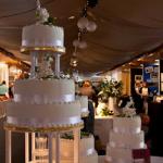 Magicians at Wedding Exhibitions and Fayres - Marketing Tips